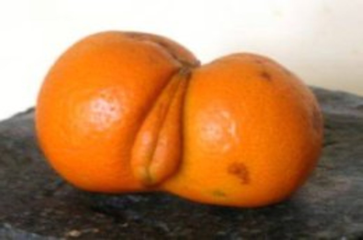 frukt-v-vaginu