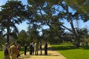 Shows Henslow tree-planting in Cambridge.