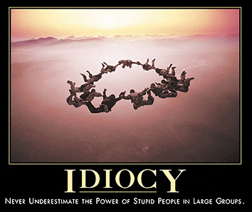 Despair.com's definition of Idiocy