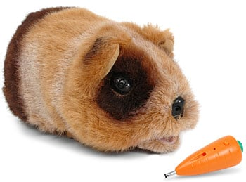 robot guinea pig