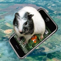 Use your iPhone to create a skysurfing board for your guinea pig