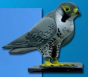 The Robop robotic falcon