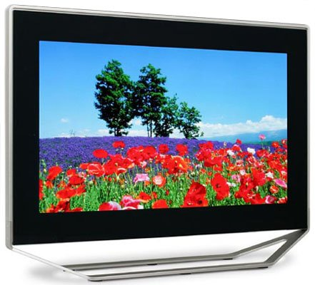 Canon's SED TV