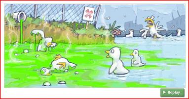 Ducks in a toxic swamp