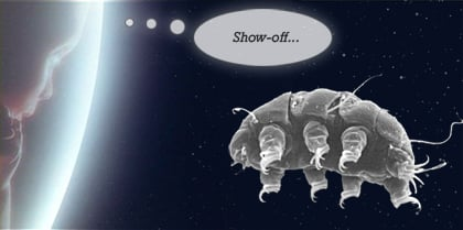 Can a water bear Tardigrade live in space  Quora