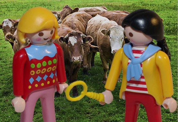 Two Swedes contemplate the failure of their bovine experiment