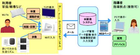 Wii_balance_board