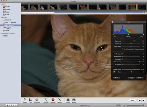 iPhoto '09 editing interface