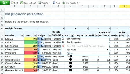 Web version of Excel