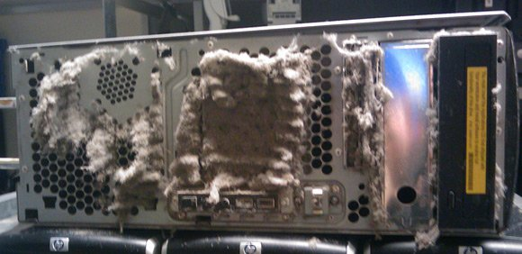 HP workstation sporting furry vents