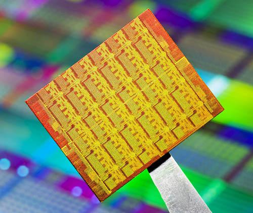 Intel Single-chip Cloud Computer die