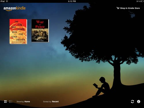 Kindle iPad app