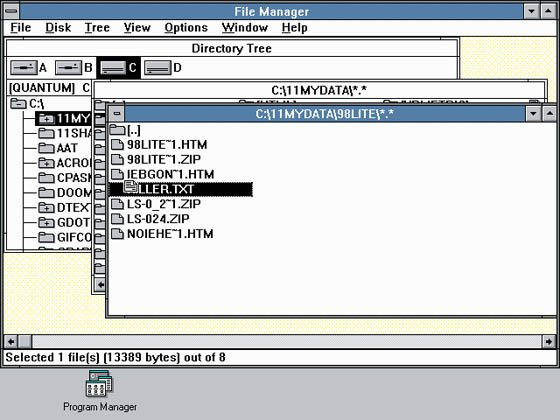 Windows 3.0 File Manager