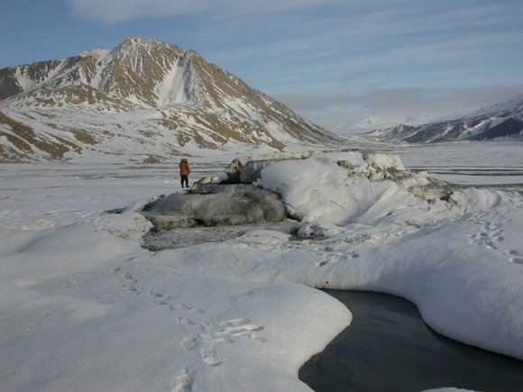 The salt-domed Lost Hammer spring on Axel Heiberg island in arctic Canada. Credit: McGill uni