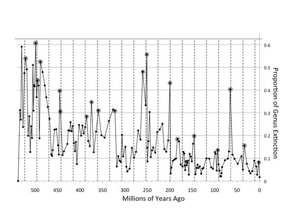 A plot of extinction intensity in the past. Credit: Richard K Bambach, Adrian Melott