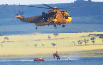 Sea King lifts horse from mud.
