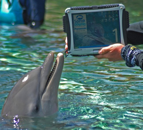 Panasonic Toughbook Dolphin