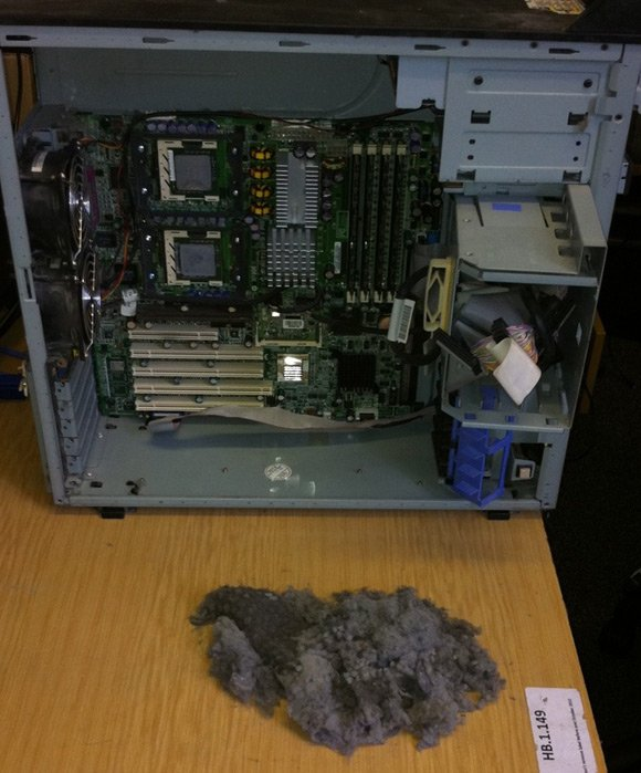 Large dust puppy removed from workstation