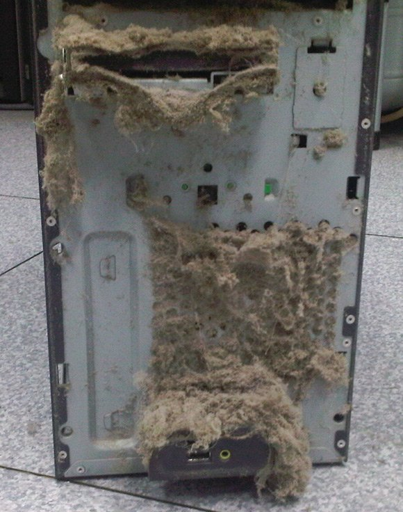 Back of PC case featuring major dust puppy