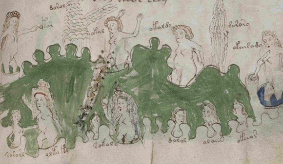 An illustration from the 'Voynich manuscript'