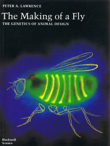 Cover of 'The Making of a Fly' by Peter A. Lawrence
