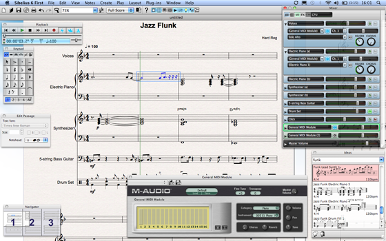 Sibelius First software