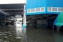 WD floods 1
