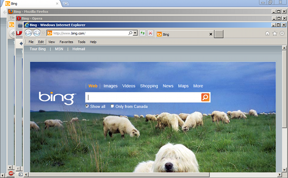 THE_BROWSER_SHEEP
