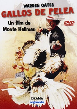 The cover of the Spanish DVD release of Cockfighter