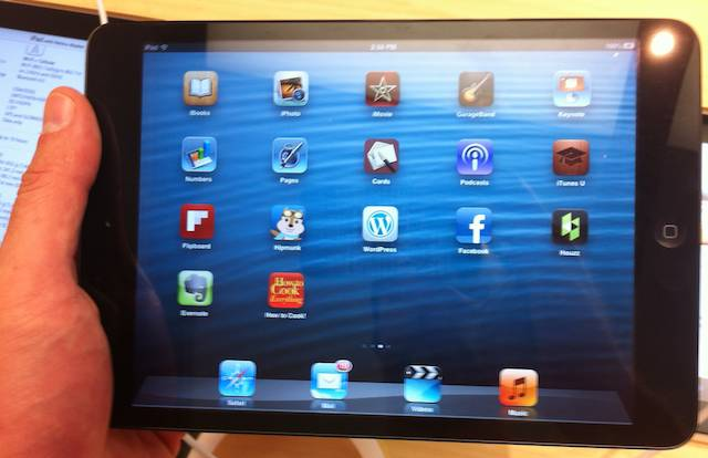 An iPad Mini held one-handed in landscape mode