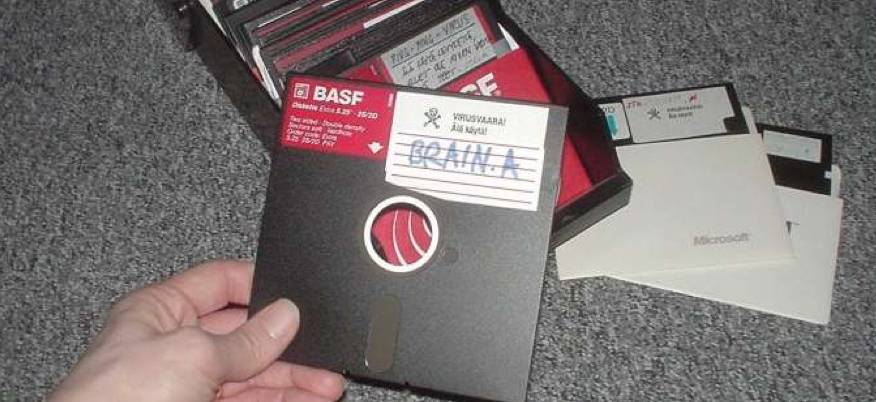 Brain virus disk