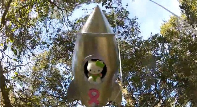 The Hello Kitty stuck in a tree after its descent
