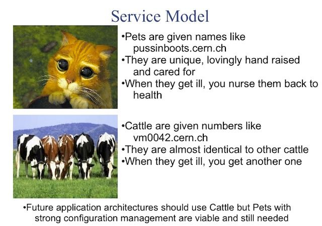 Are your servers pets or cattle?