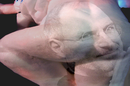 Steve Jobs arse