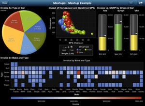 SAS Visual Analytics Mobile BI iPad app