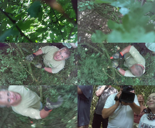 Montage of stills from the CHAV Picam as the aircraft is teased from the treetops