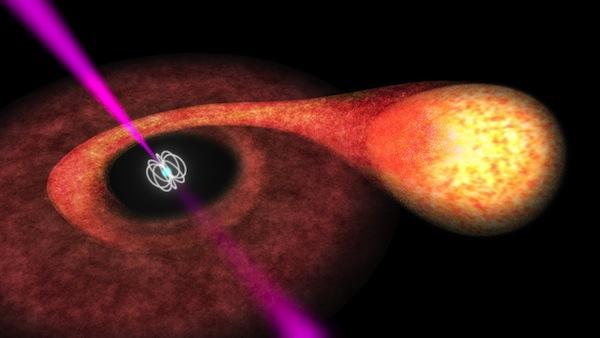 Radio pulsar and companion