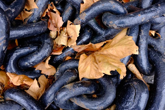 Snap of chains and leaves on the Fujifilm FinePix X100 Velvia setting