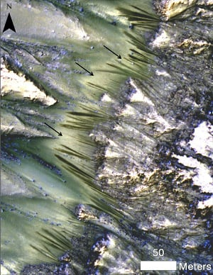 Dark, seasonal flows at Palikir Crater on Mars snapped by the High Resolutio
