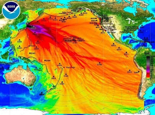 NOAA map of post-Fukushima ocean wave heights