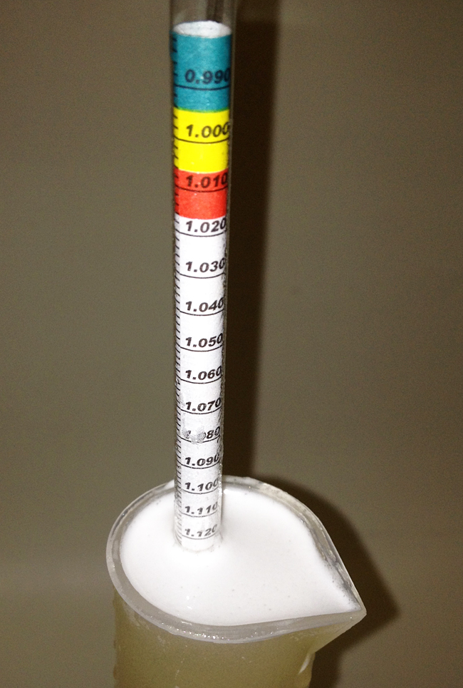 The hydrometer test