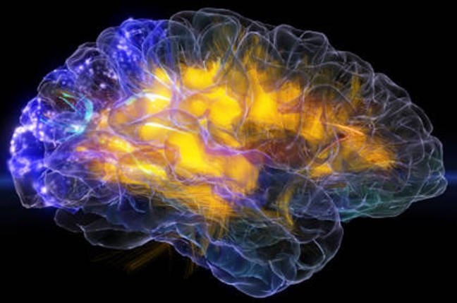 """Image from the glassbrain project, neuroscapelab.com, UCSF"