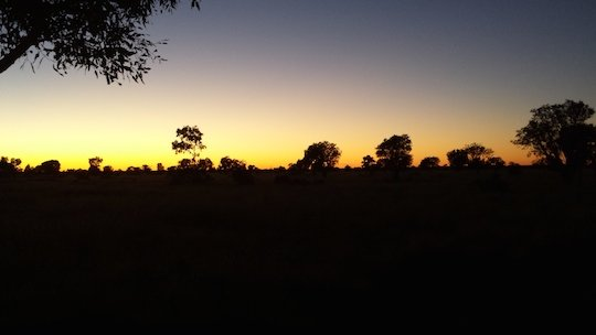 Dawn in Willowra