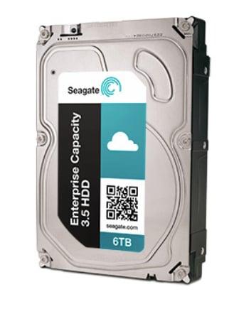 Sagate 6TB Enterprise Capacity Drive