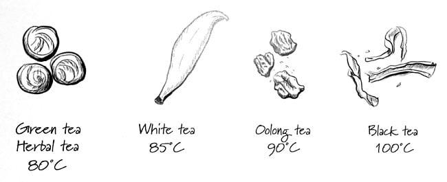 Tea type temperature guide