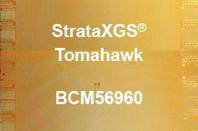 Broadcom Tomahawk chip