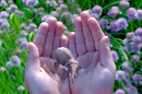 "Magic Leap's mysterious tech for ""cinematic reality"""