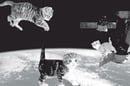 Douglas Coupland, Hans Ulrich Obrist, Shumon Basar, The Age of Earthquakes: A Guide to the Extreme Present kitten warp