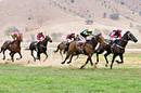 Horse_racing