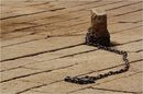 Chain expressing freedom (Stepph / Wikimedia)